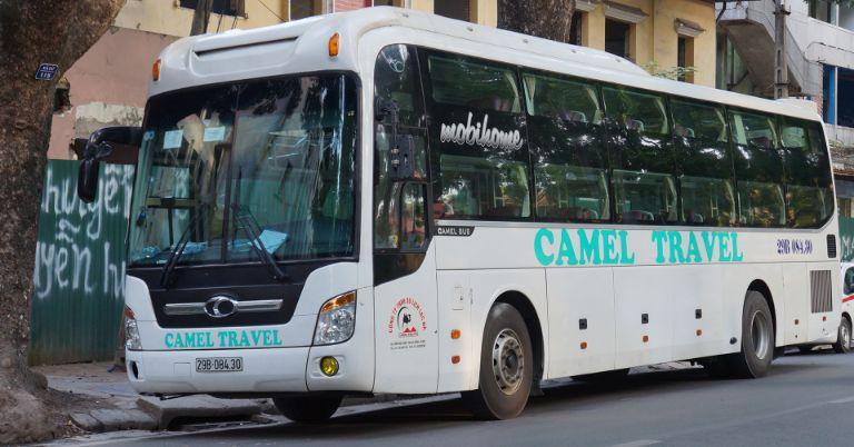 Nhà xe Camel Travel Hội An