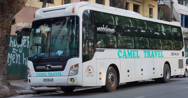 Camel Travel- Nhà xe uy tín