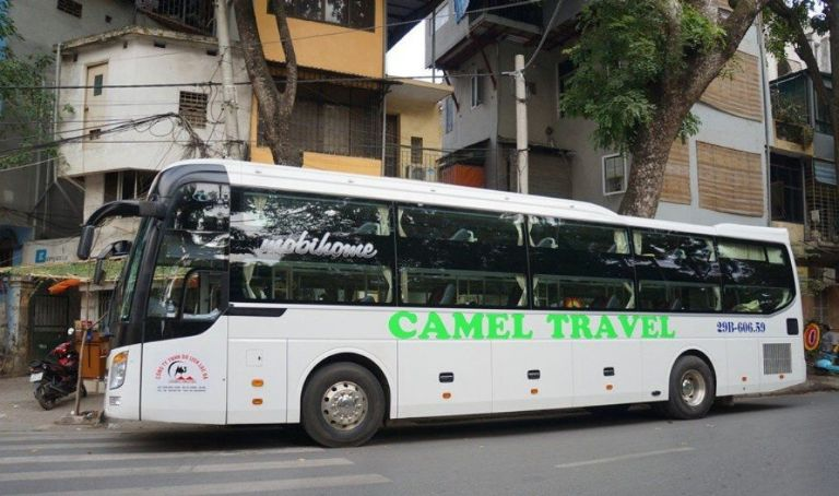 Xe Camel chất lượng cao