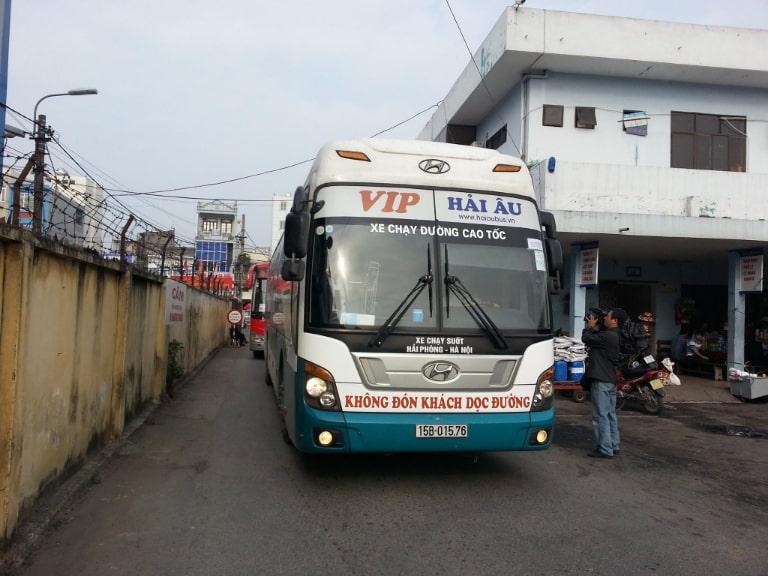 Xe Hải Âu VIP