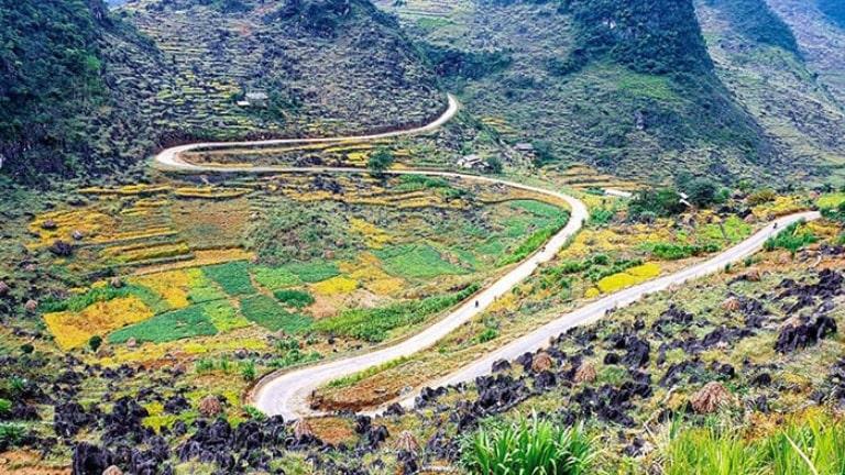 Diện tích rộng và địa hình chủ yếu là núi cao