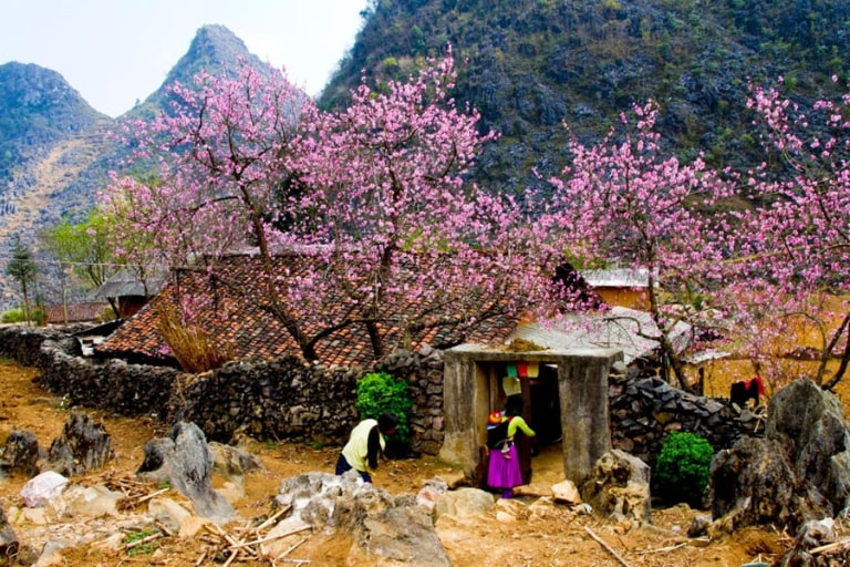 Bản đồ du lịch tại Hà Giang sẽ chỉ dẫn cho bạn đường đi cụ thể đến Mèo Vạc