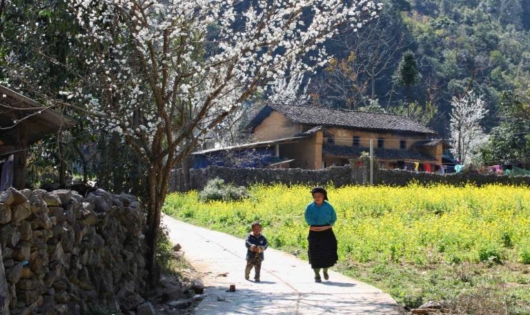 Tham khảo kinh nghiệm du lịch Hà Giang để có một chuyến đi đáng nhớ nhất
