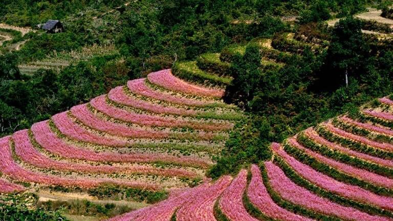 Hà Giang là một tỉnh miền núi với địa hình phức tạp
