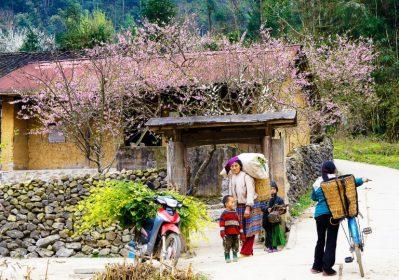 Du lịch Hà Giang mùa nào đẹp