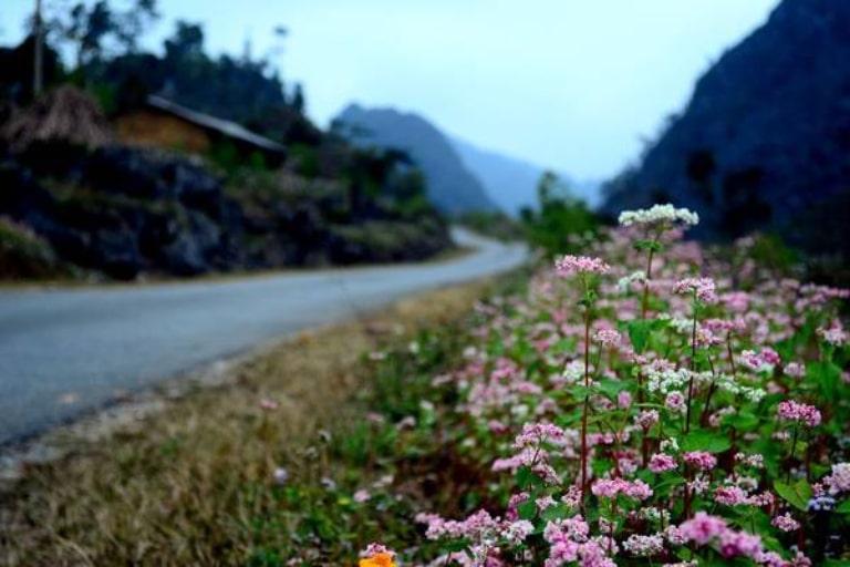 Mỗi thời điểm vùng đất này đều sở hữu một vẻ đẹp riêng