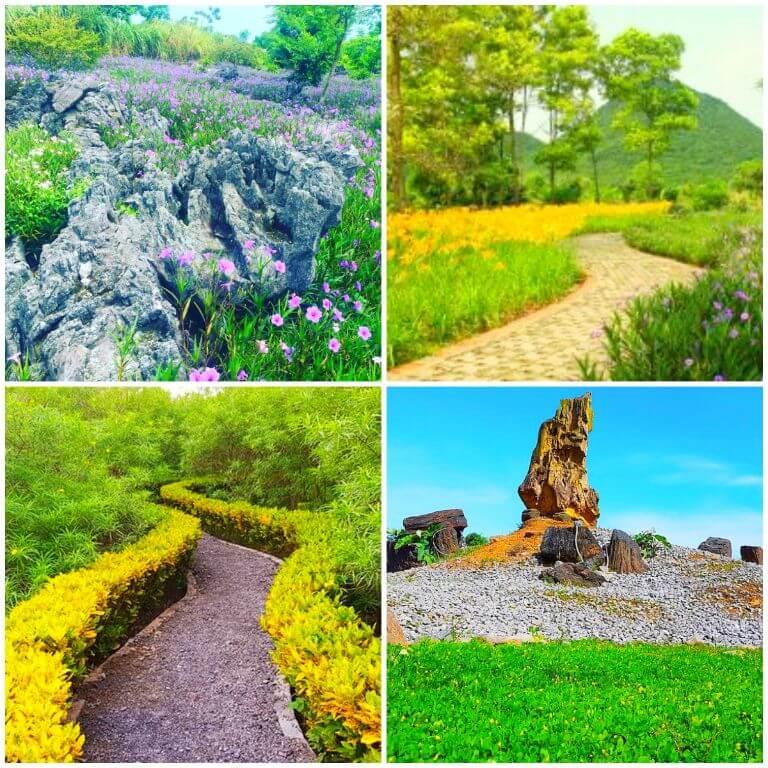 Giới thiệu về Cúc Phương Resort & Spa