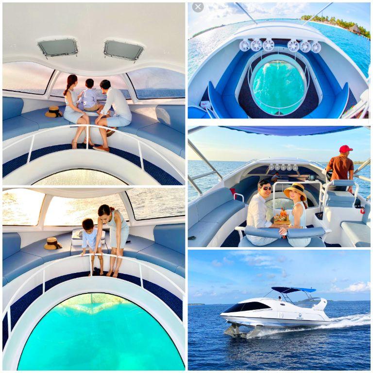 Ngắm đại dương với tàu Looker