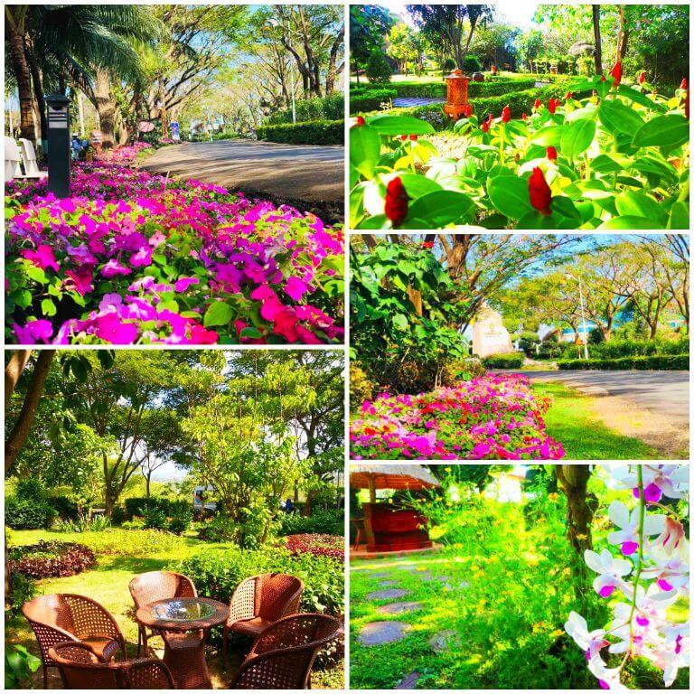 VietStar - Resort Sao Việt Phú Yên