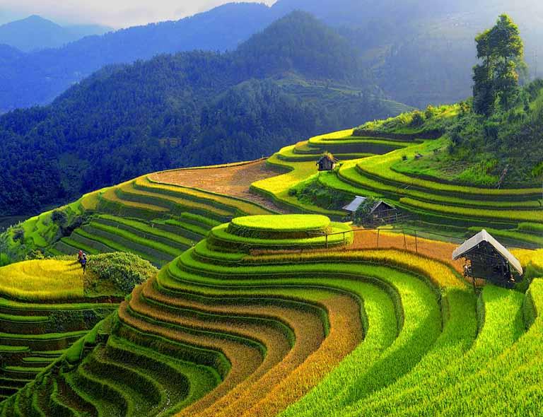 tour du lịch 1 ngày gần Hà Nội