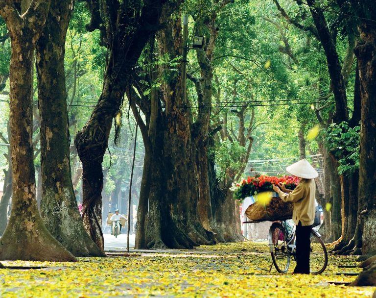 Hà Nội mùa thu như bức tranh sống động nhiệm màu