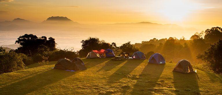 Khám Phá TOP 8 Địa Điểm Cắm Trại Ba Vì Có View Đồi Thông