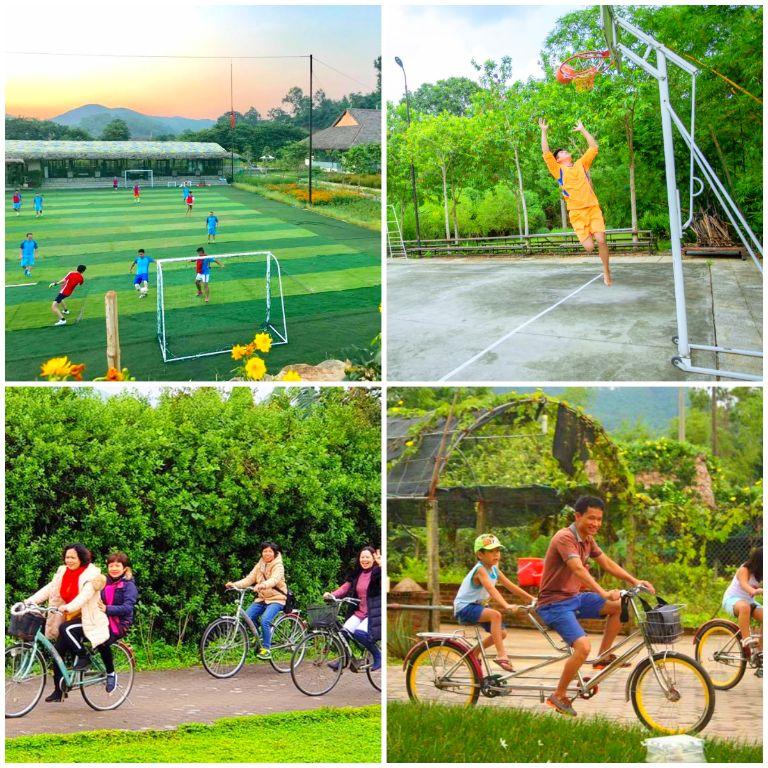 Thể thao rèn luyện sức khỏe