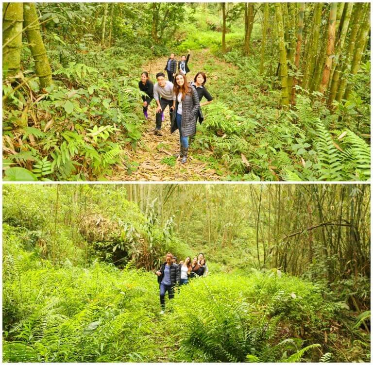 Tour đi bộ xuyên rừng