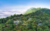 Resort Melia Ba Vì | Thao Thức Với Cung Đường Ngắm Hoa Dã Quỳ