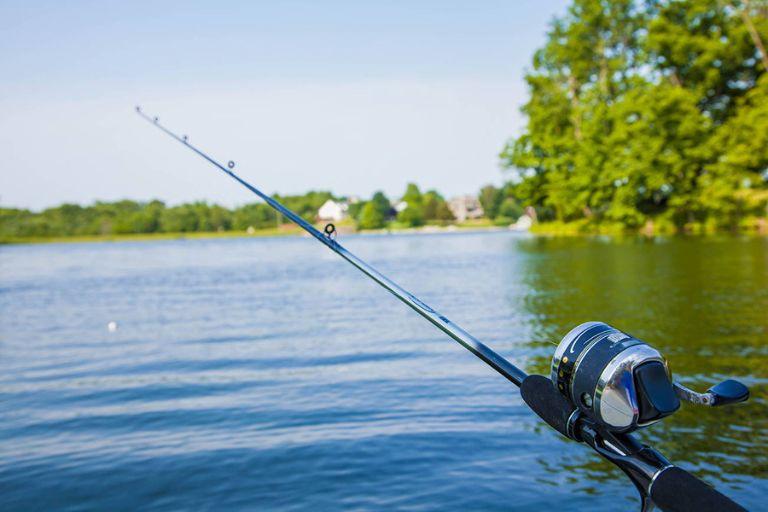 Ao câu cá riêng